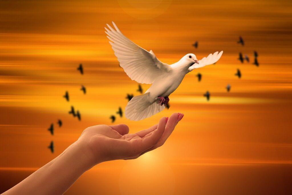 Specifik aide est une ressource pour accompagner dans la période du deuil par un appui spécifique